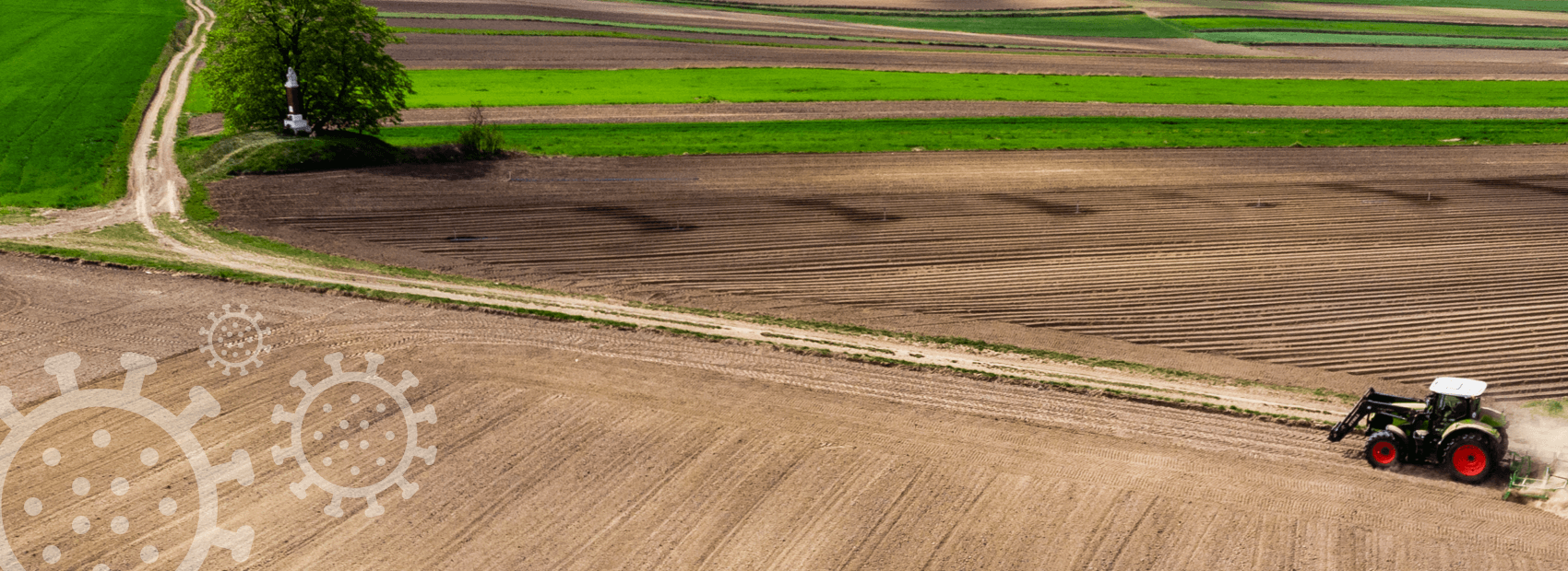 Corona Hilfen in der Landwirtschaft