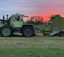 Aktuelle Erntebilanz: Getreideernte unterdurchschnittlich
